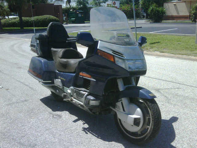 Goldwing Front